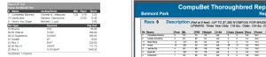 Belmont Park Race#9 051916