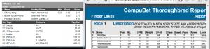 Finger Lakes #9 052616