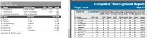 Finger Lakes #9 070516